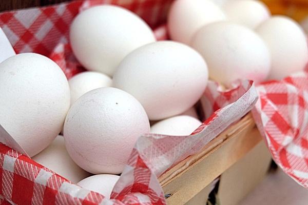 Lassan önellátó lehet az unió tojásból?