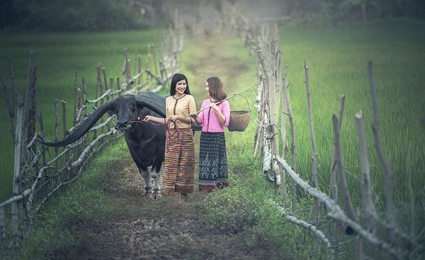 A Távol-Keleten a leginkább jellemző, hogy nők is végeznek fizikai munkát a mezőgazdaságban