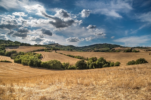 Nagyobb részesedés a mezőgazdaságból - ezt szeretné elérni a takarék