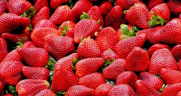 Sok gyümölcsöt foglaltak le a szakemberek, köztük rengeteg epret is