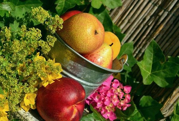 Sokat drágultak a gyümölcsök júniusra
