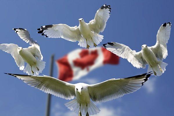 Szeptember 21-től megszűnt a Magyarország és Kanada között  életbe lépett a CETA.