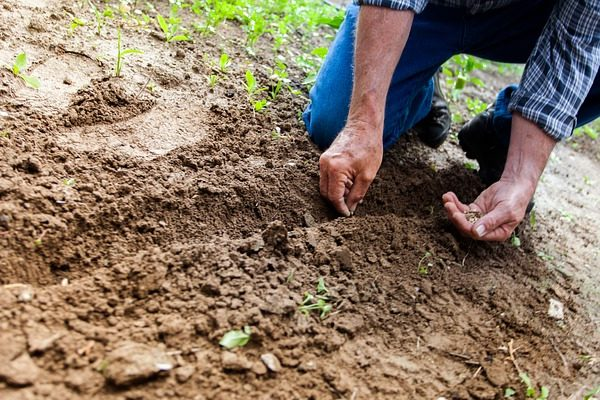 A talajjavítás nem elodázható