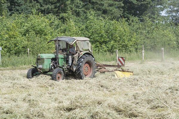 A Magyar Államkincstár kifizetései időben megérkeztek a gazdákhoz - Fotó: Pixabay, Sabine van Erp