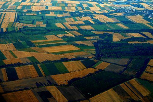 Életben és karban tartja a talajokat a zöldtrágyázás - Fotó: Pixabay, kitti851