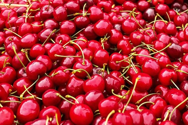 Csökkenő számokat hoz a magyar gyümölcstermesztés: egyedül a cseresznye termőterületei növekedtek.
