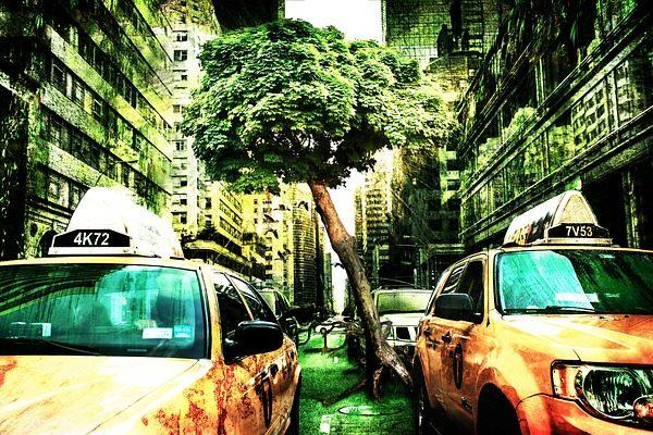 A környezetvédelem sokszor zavarja az ipar terjeszkedését - de miért kell embereknek meghalnia?
