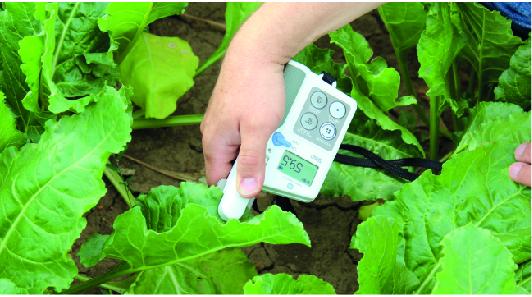 A klorofill koncentráció és a tápanyag ellátottság helyszíni, gyors és objektív mérésére napjainkban az egyik legelfogadottabb műszer a SPAD mérő. A SPAD érték és a levelek nitrogén, valamint klorofill tartalma és a várható termésmennyiség között szoros összefüggés van. A Huminisz technológiával kezelt cukorrépa SPAD-értéke már 1-2 nappal a kezelést követően (más kultúrákhoz hasonlóan) átlagosan 4-5 értékkel magasabb, mint a hagyományos lombtrágyákkal kezelt vagy a kezeletlen növényeknél. Ennek oka, hogy a huminsavas kezelés hatására a növényben a légzés és a fehérjeszintézis mellett felgyorsulnak az asszimilációs folyamatok.