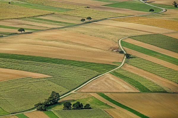 Jobb a bioszántó is, ha változatosan termelnek rajta