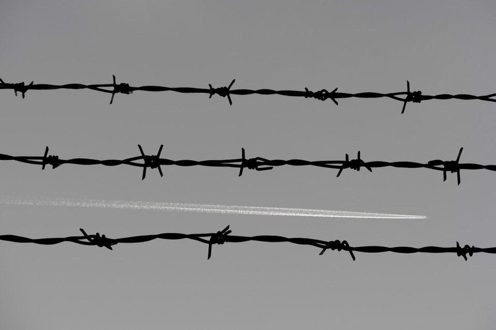 Kerítéssel védenék meg magukat az ASP-től a lengyelek (Fotó: Pixabay, JarkkoManty)