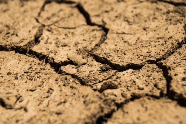 A földek tulajdonviszonyait tisztázó program költsége 9,5 milliárd forint (Fotó: Pixabay, daeron)