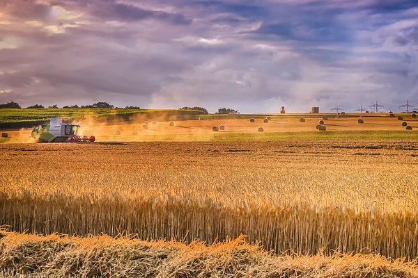 Vajon milyen irányban változtatnának a pártok az agrárpolitika terén?