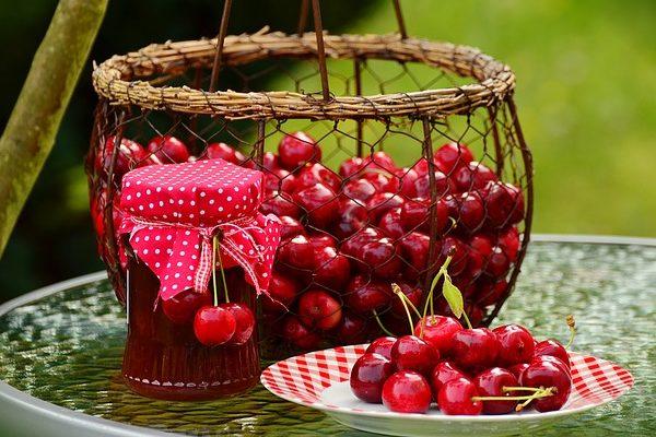 A meggy és a cseresznye tavaszi növényvédelme dönti el, milyen minőségű lesz a gyümölcs