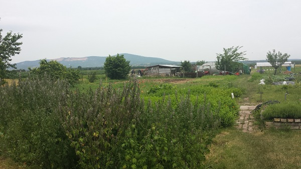 Az Ökológiai gazdálkodásra történő áttérés, ökológiai gazdálkodás fenntartása pályázat jelentősen megváltozott