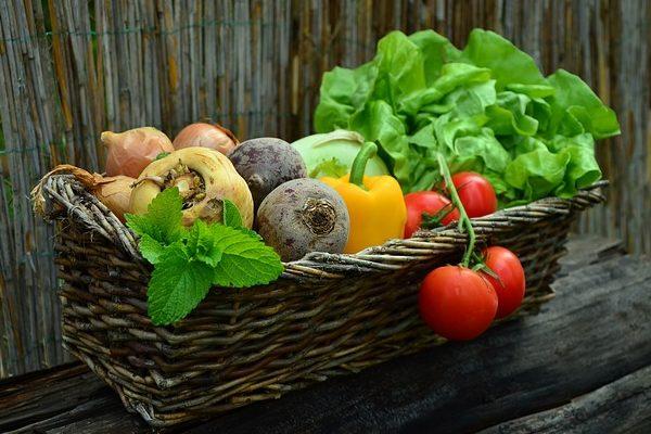 Jó helyzetben lesz a magyar zöldségtermesztés júliusban és augusztusban