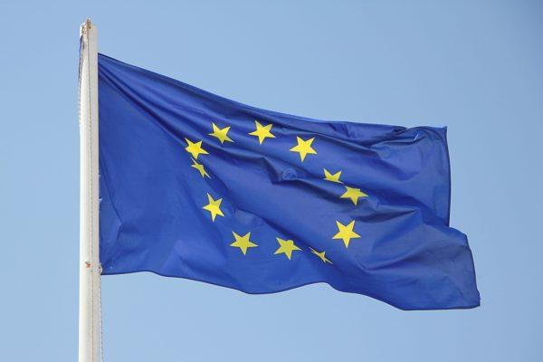 Az EU belső piacán évek óta Magyarország a legnagyobb frissmeggyexportőr (Fotó: Pixabay, GregMontani)