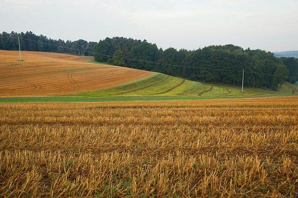 Több feltételnek kell megfelelnie, ha nitrátérzékeny területen gazdálkodik