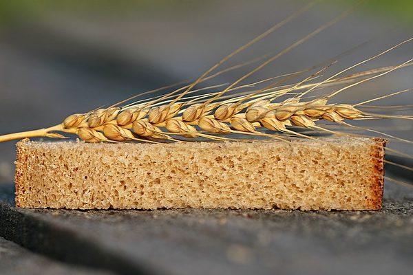 A gabona és ipari növények piaci helyzetéről adott ki jelentést az Agrárgazdasági Kutató Intézet