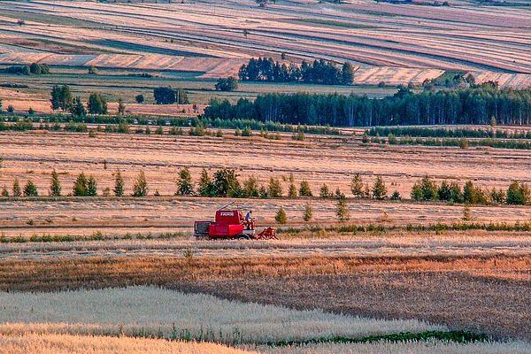 A teljesítmény növelésén túl az agrárkereskedelemben is jöhet a lengyel csoda