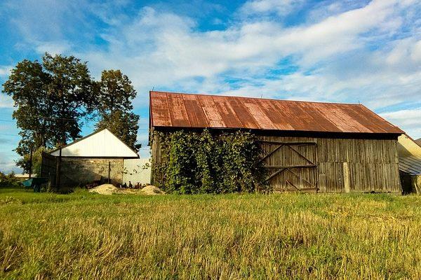 A tanyafejlesztés célja az, hogy minél több fiatal találja meg helyben a boldogulását.