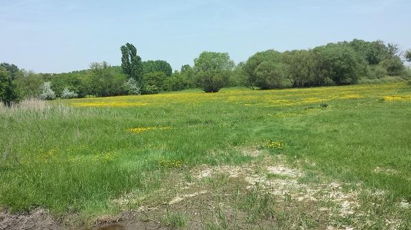 Az ökogazdaságok fenntartására és a biora való átállásra is sok pénzt lehet igényelni