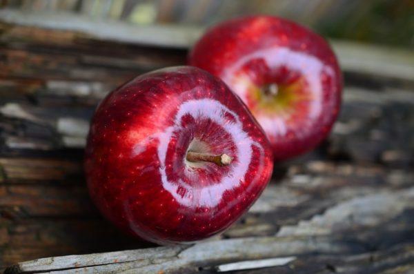 Az almának több mint 15 ezer különböző fajtája létezik (Fotó: Pixabay, congerdesign)