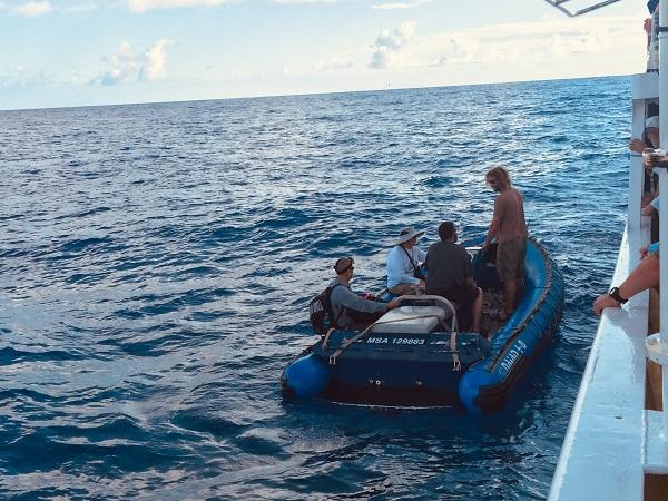 Munkában a kutatócsoport a szigorúan védett és érintetlen korallszigethez közeli vízen