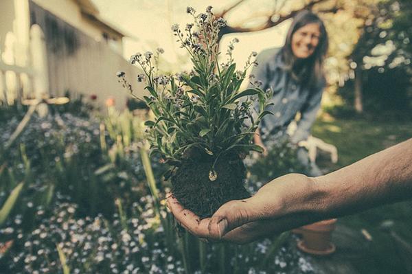 Segíti az egészséges életmód megvalósítását a kertészkedés