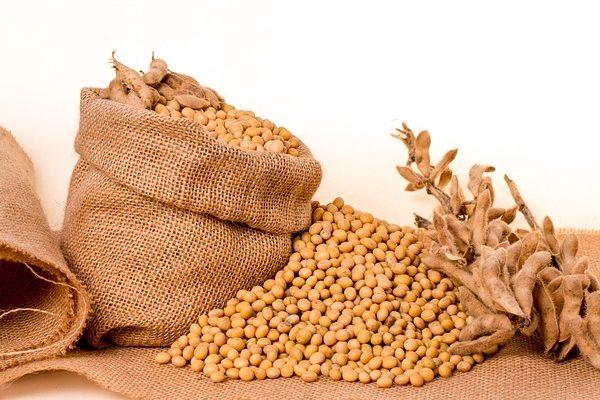Ha nő a bioüzemanyagok bekeverési aránya, csökken a GMO-szójától való függőség