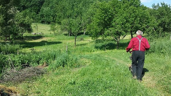 Gyulai Iván 2018. májusában füvet nyír a gömörszőlősi fenntartható falu kertjében