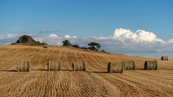 Az uniós támogatások megtartása a jelenlegi szinten szükséges nagyon fontos, hogy a magyar mezőgazdaság tovább fejlődhessen