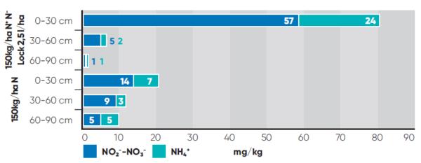 1. ábra. Az N-Lock™ hatása a talaj ammónium- és nitrátion-tartalmára az állománykezelést követő 1 hónap múlva. Szolnok, 2016. július 3.