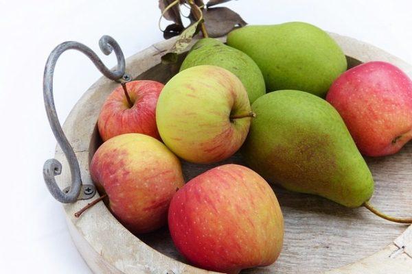 A tűzelhalás betegség hamarosan megjelenhet az almatermésű gyümölcsösökben (Fotó: Pixabay, silviarita)