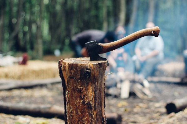 A tűzifa vásárlása előtt érdemes több felületen tájékozódni az eladó megbízhatóságáról