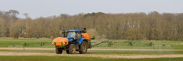 Egyre nehezebb a növényvédelem Magyarországon, mert kisebb hatóanyag-választékhoz nyúlhatnak a gazdák a szigorodó feltételek miatt