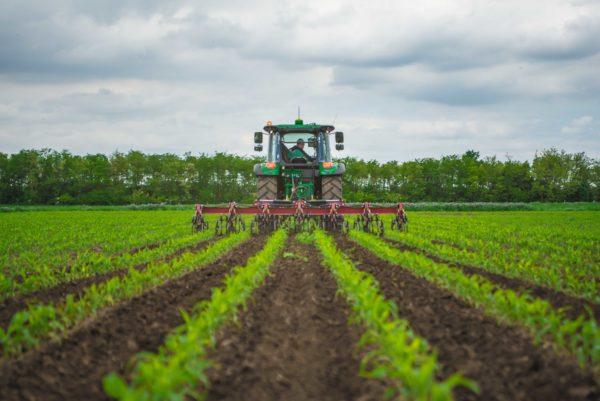 Az érdeklődők mozgógép-bemutatóval egybekötött termesztéstechnológiai bemutatót is láthattak (Fotó: KITE)