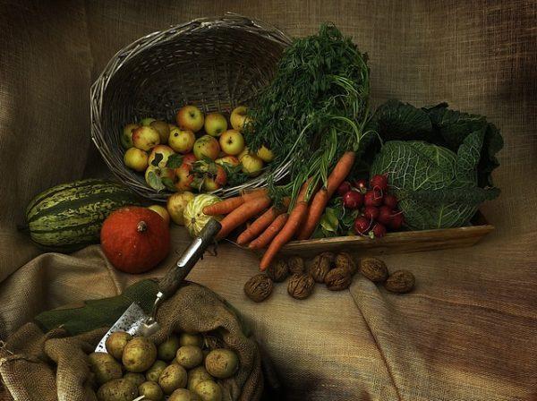 A magyar élelmiszergazdaság megfelelő fejlesztésekkel akár 20 millió embernek is tudna megbízható, egészséges élelmiszert adni