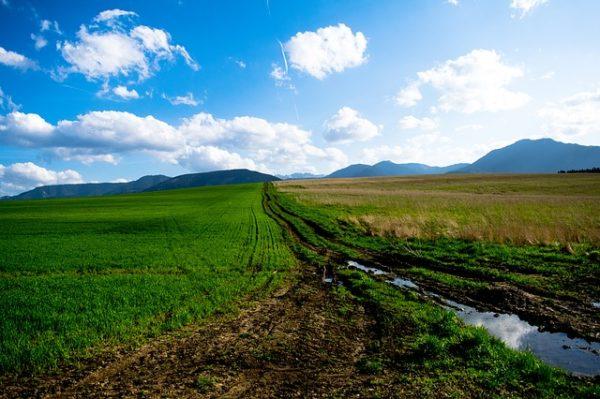 Fontos, hogy engedéllyel rendelkező talajvédelmi szakértő javasoljon bármit is a földünkön