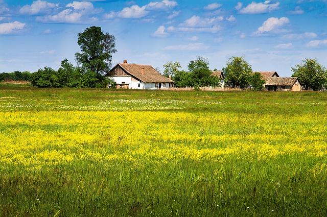 Vidékfejlesztésre fel: a Falusi CSOK 2486 magyar településen vehető igénybe