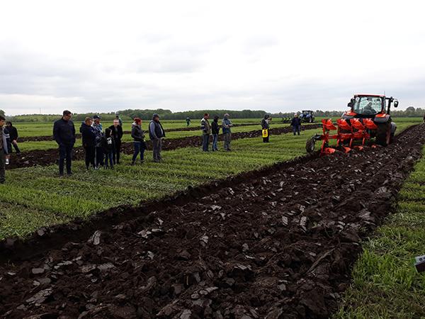 Kubota traktor húzza az ekét Mezőfalván