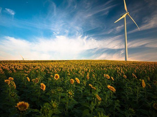 A megújuló energiák egyre szélesebb körben terjednek a magyar mezőgazdaságon belül is