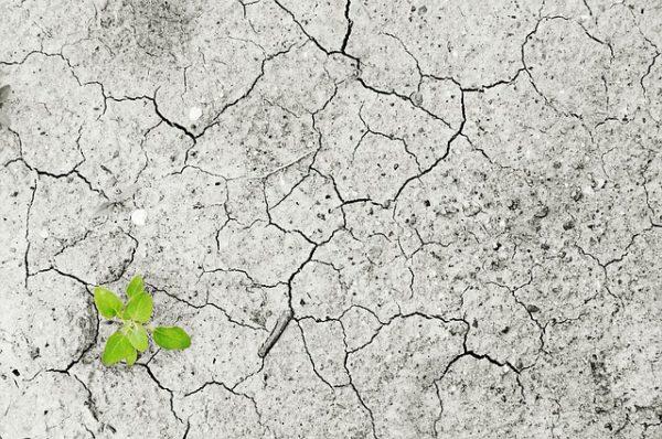Az erózió rontja a talajéletet és csökkent tápanyagtartalmaz okoz