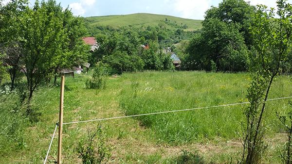 A villanypásztorok elhelyezésére és a hozzájuk közel lévő ágak eltávolítására is figyelni kell - képünk Gömörszőlősön, a Borsod-Abaúj-Zemplén megyei fenntartható faluban készült