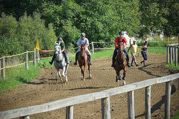 Helyi, Baranya megyei lovas nyerte meg a Szentlőrinci Vágta lóversenyt - Fotó:, illusztráció BMVK-archív, a 2018-as Szentlőrinci Gazdanapok rendezvényről