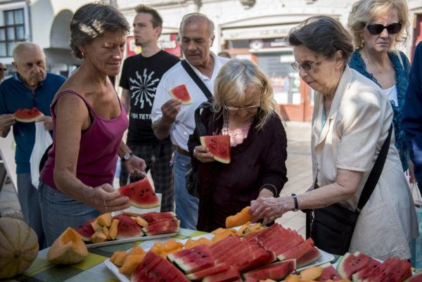 Kelendő a magyar dinnye külföldön is, komoly exportnövekedést jósolnak neki - Fotó: MTI, Sóki Tamás