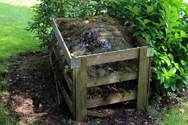 Nem mindenre vevő a komposzt: van, amit nem tehetünk bele, ha jó szerves trágyát szeretnénk létrehozni