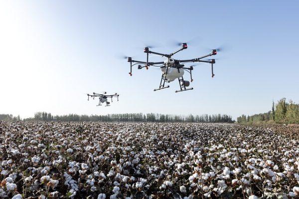 Precíziós agrárgazdálkodási továbbképzés indulk a Szegedi Tudományegyetem szervezésében 2019. őszétől Hódmezővásárhelyen: a fókuszban a drónos megfigyelés lesz.