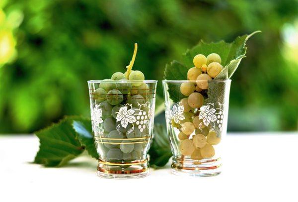 Hiába lesz a tavalyinál kisebb a szőlőtermés, a felvásárlók alacsony árakat hirdettek meg