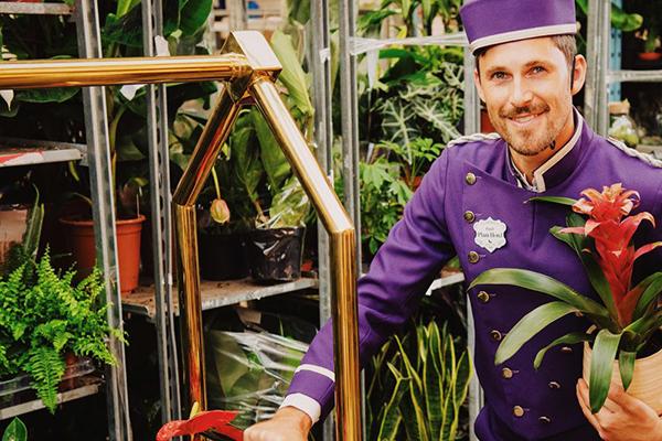 100 fős növényhotel nyílt Londonban, hogy megkönnyítse a nyaraló, vagy elutazó tulajdonosok életét: ápolják és kényeztetik is a növényeket