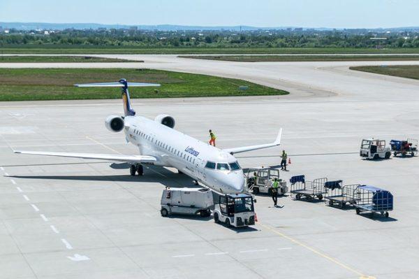 Sokféle növénybetegséget is hazahozhatnak a külföldről visszatérő utazók, ezért szigorúbb ellenőrzések lesznek az európai reptereken is